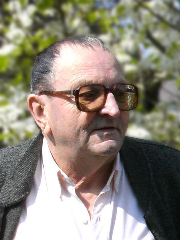 Henri Galle